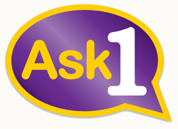 Ask One Preston purple